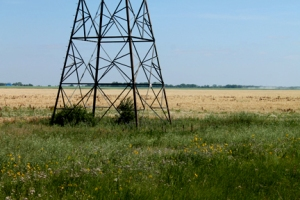 Hydro tower in field - Copy