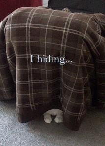 i hiding