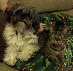 Basil and Sally